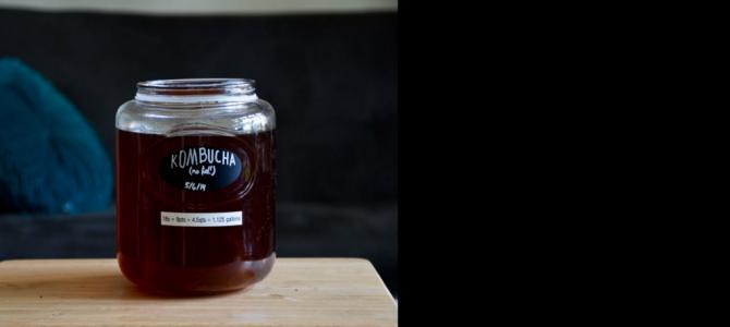 What is Kombucha Tea?