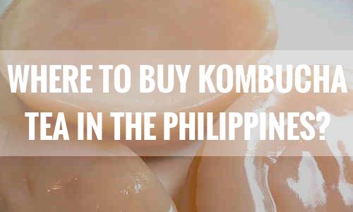 Where to Buy Kombucha Tea in the Philippines