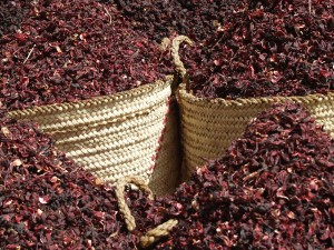 dried hibiscus for kombucha brewing