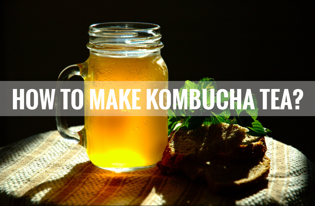 kombucha tea recipe