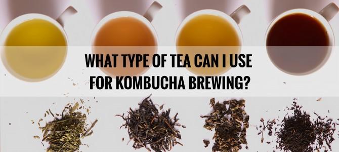 What Type of Tea Can I Use to Make Kombucha?