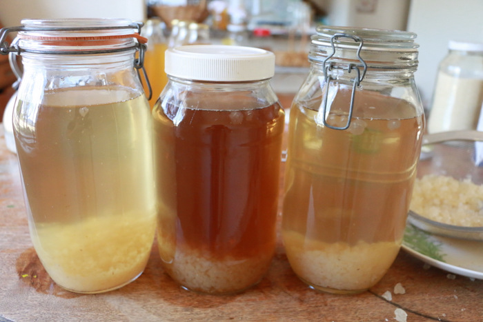 brewing water kefir
