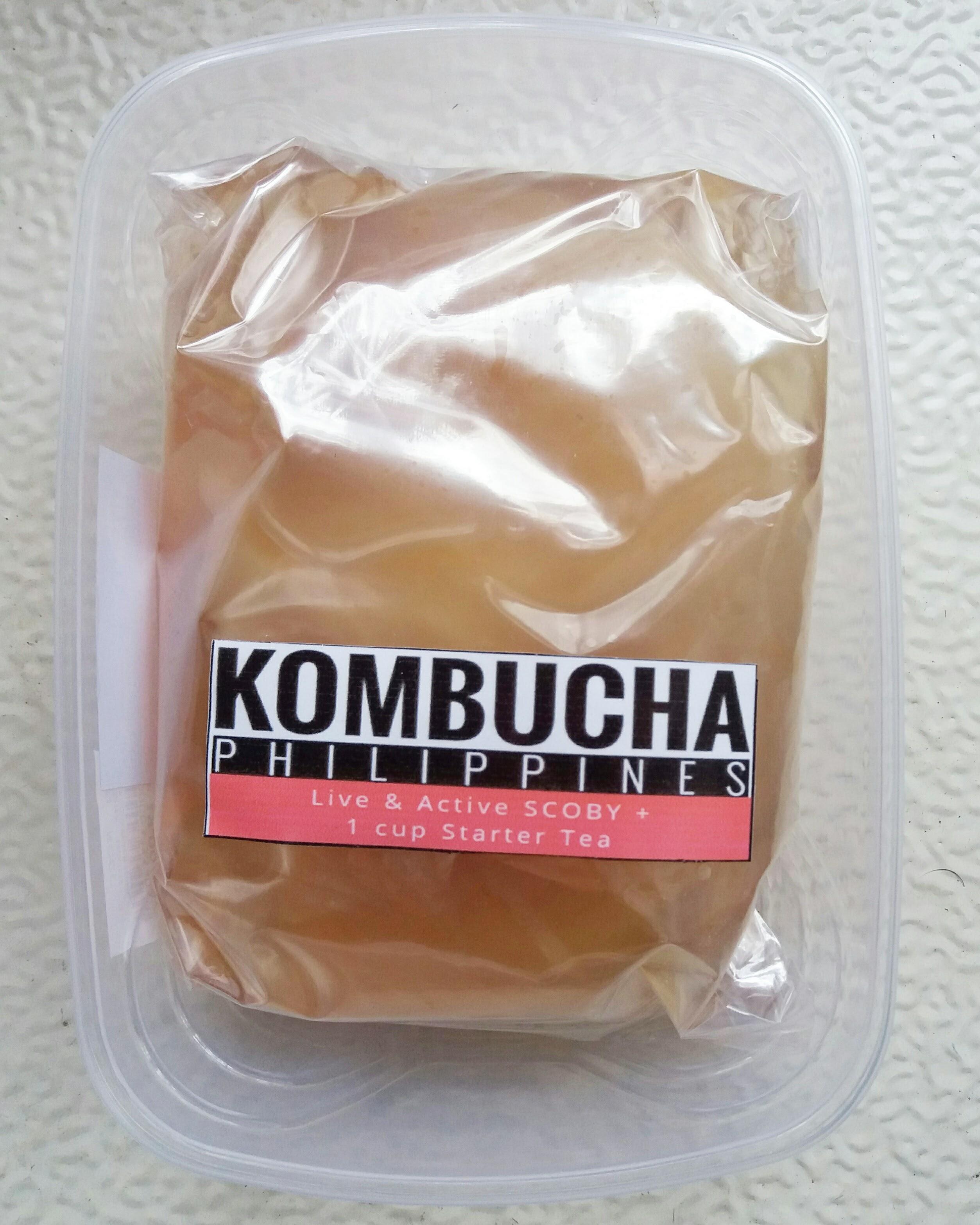 kombucha starter philippines