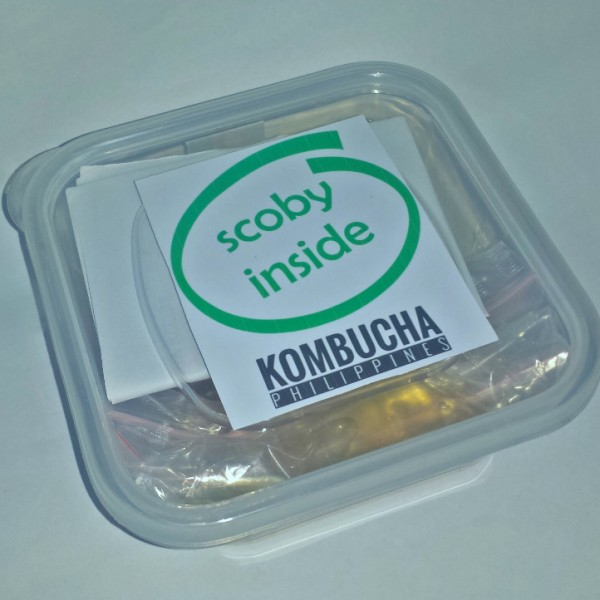 kombucha starter kit philippines