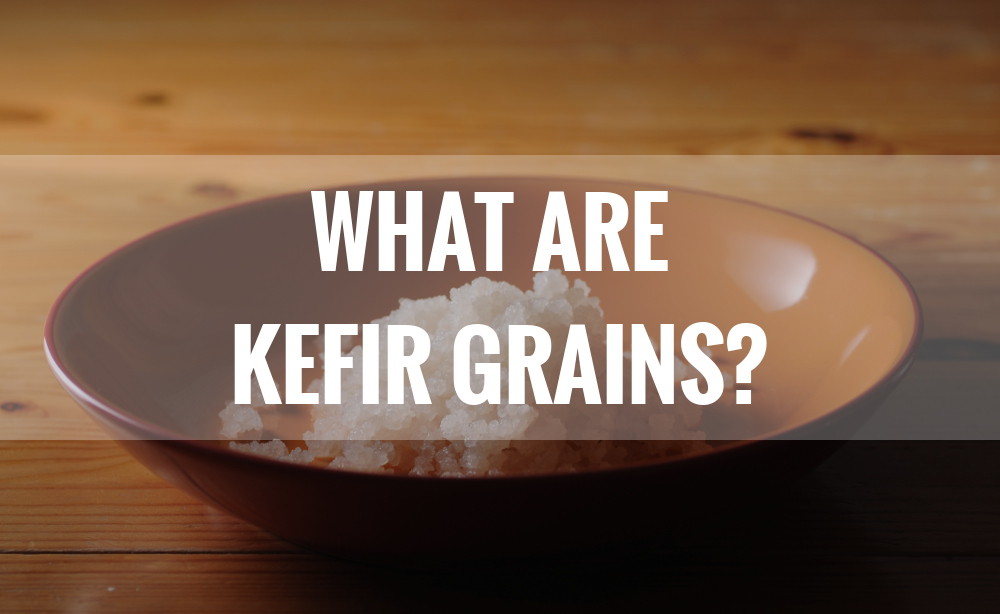 what are water kefir grains