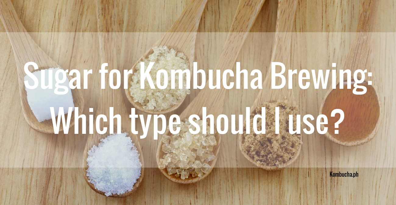 Sugar for brewing kombucha