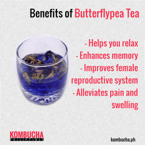 benefits of clitoria tea