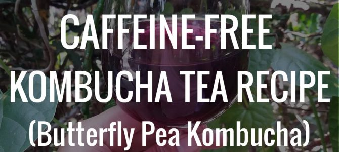 How to Make Caffeine-free Kombucha Tea (Butterfly Pea Kombucha)