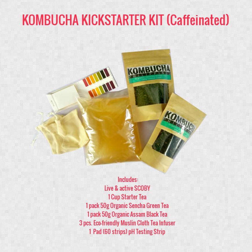 kombucha philippines starter kit