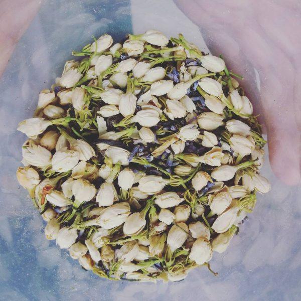 jasmine lavender tea philippines