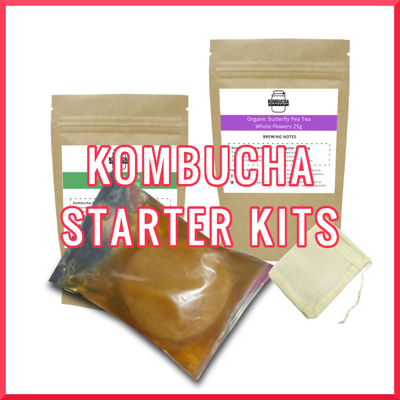Kombucha Brewing Kits